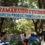 హైదరాబాద్లో ఐటి కలకలం